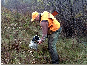 Maine sea duck hunting thornehead guide service co for Maine hunting and fishing license